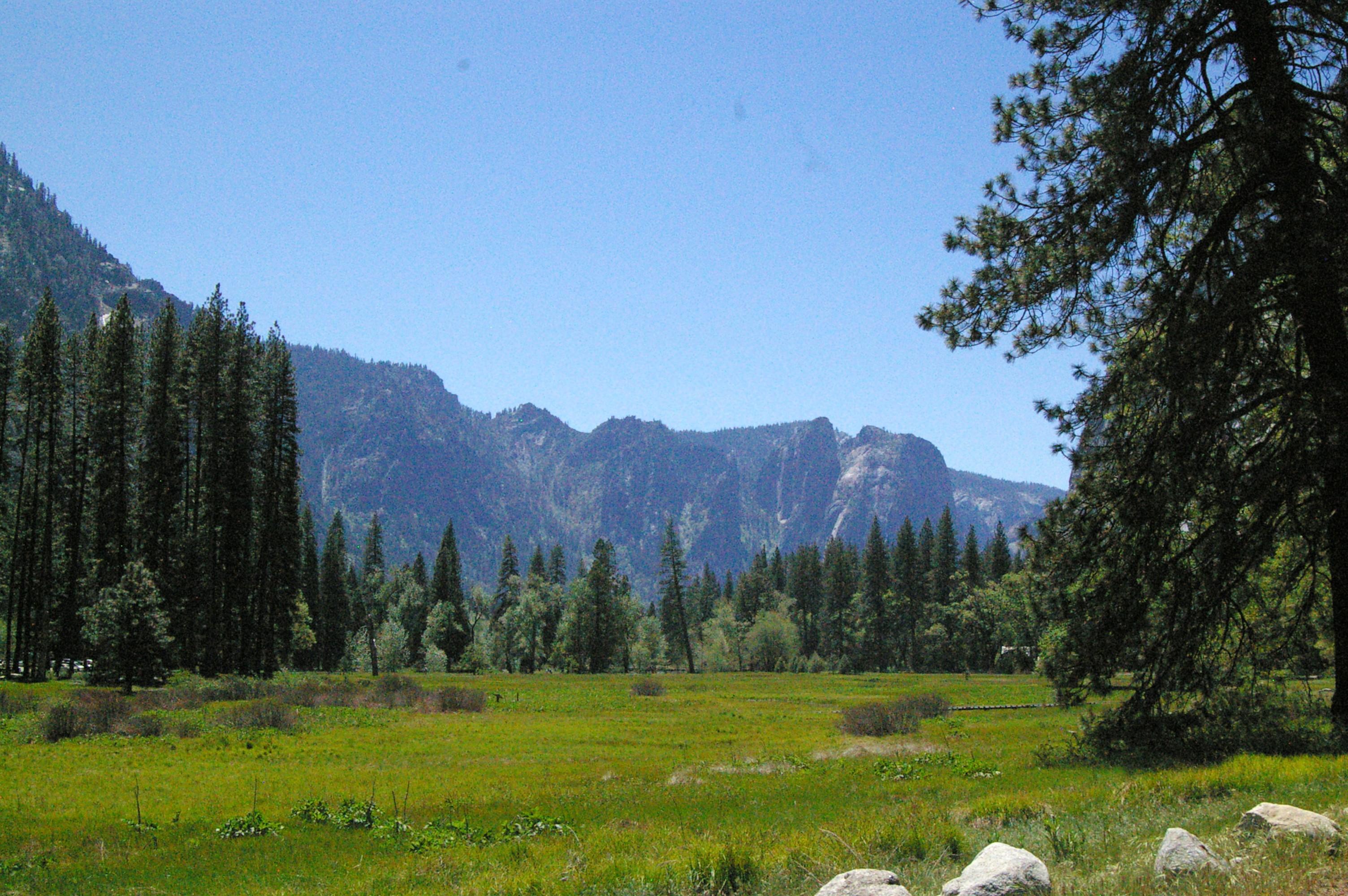 Visit at Yosemite